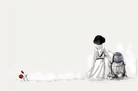 Princess Leia Organa: We have no time for sorrows, Commander. You must use the information in this R-2 unit to help plan the attack- it's our only hope.