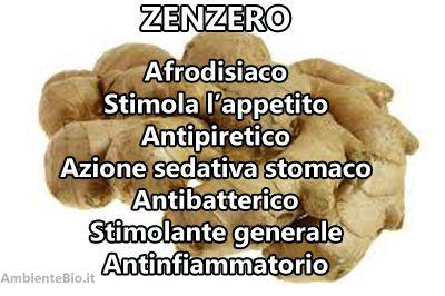 Lo zenzero è una radice di una specie di pianta originaria dell'Asia, un rizoma che viene utilizzato in medicina e cucina tradizionale. Si tratta di una spezia ampiamente utilizzato in molte cucine asiatiche, soprattutto nella cucina indiana. In tutti i tempi e in tutte le culture, lo zenzero viene considerato afrodisiaco. In effetti è un …