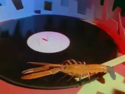 The B52´s - Rock Lobster (Official Music Video) #joescrabshack