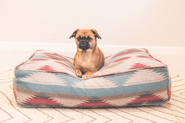 Κρεβάτι σκυλιών για τα μεγάλα και τα μικρά σκυλιά.