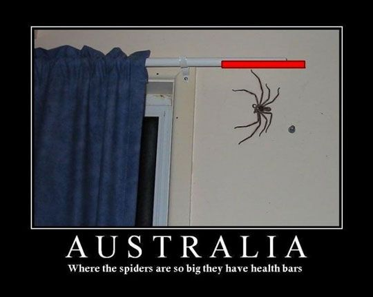 funny...and yet, I'm never going to visit Australia now. Not true I will :)