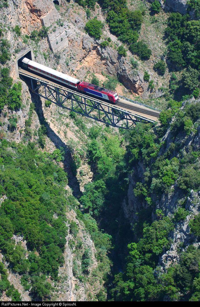 RailPictures.Net Photo: OSE Hellenic Railways ADTRANZ SIEMENS BOMBARDIER at Asopos, Greece by SpirosN.