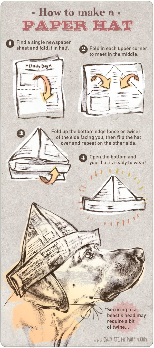 How to make a paper hat - Oscar dog's DIY paper party hat instructions