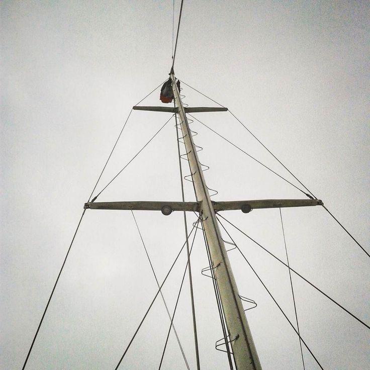 Sailor-scimmietta in testa d'albero in sicurezza col banzigo ma il segnavento non funziona :( #testadalbero #scimmietta #colbanzigo #piùtranquilla #segnavento #anemometro #nonfunzia #windmesser #perseus #dueviteavela #ketch #casanostra #sailboat by dueviteavela