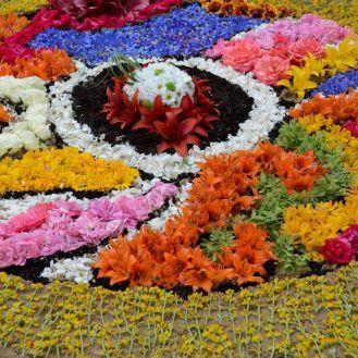 Flower carpets in Spycimierz (Uniejów)