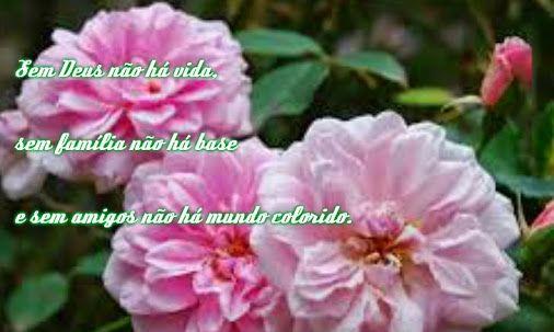autrafacedaamizade.blogspot.com