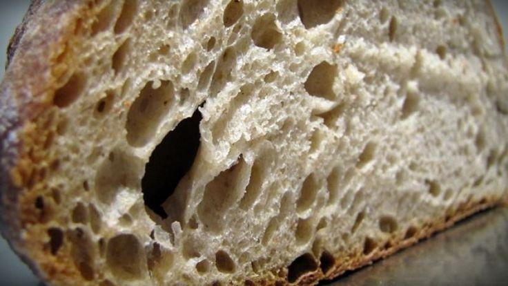 Ideas sobre la fermentacion natural II
