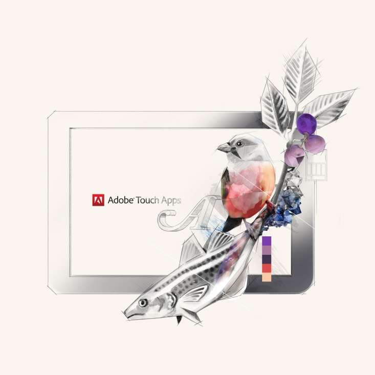 Key visuals for the family of applications  Adobe Touch Apps
