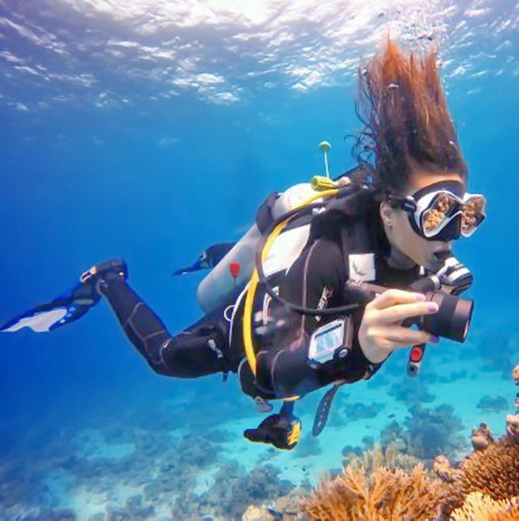 пиросомы и аквалангист фото учите