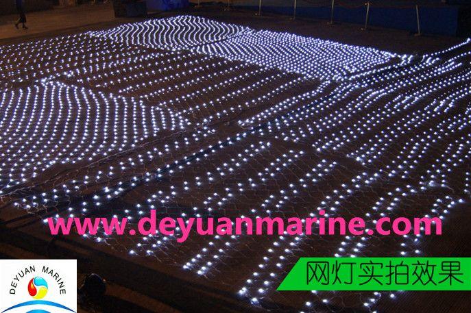 CE approval fishing net light