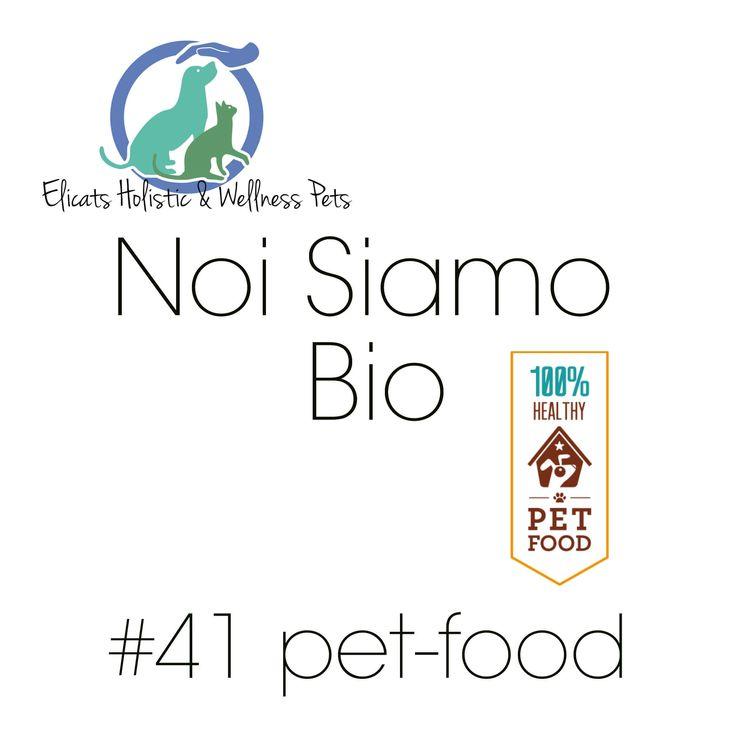 In questo articolo lista dei mangimi per un pet-food più sano cane gatto, elenco di marche biologiche cruelty free con ingredienti idonei al consumo umano