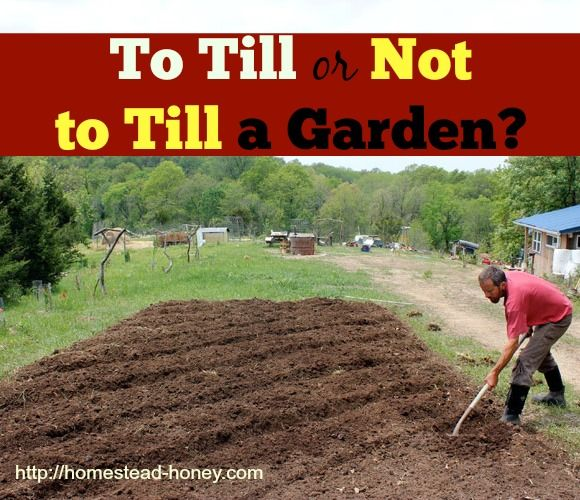 Tilling Backyard: 44 Best Images About Dirt, Manure, And Compost On