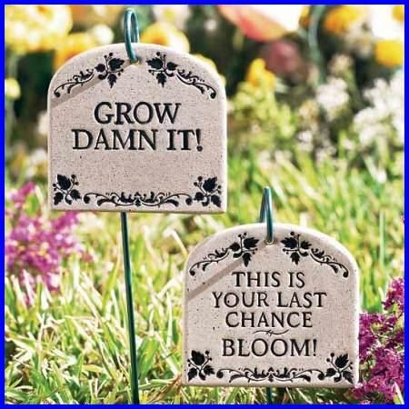 Garden Sign Ideas garden sign gift for gardener to plant a garden is to believe in tomorrow rustic garden sign porch sign great for garden shed Find This Pin And More On Garden Signs Quotes