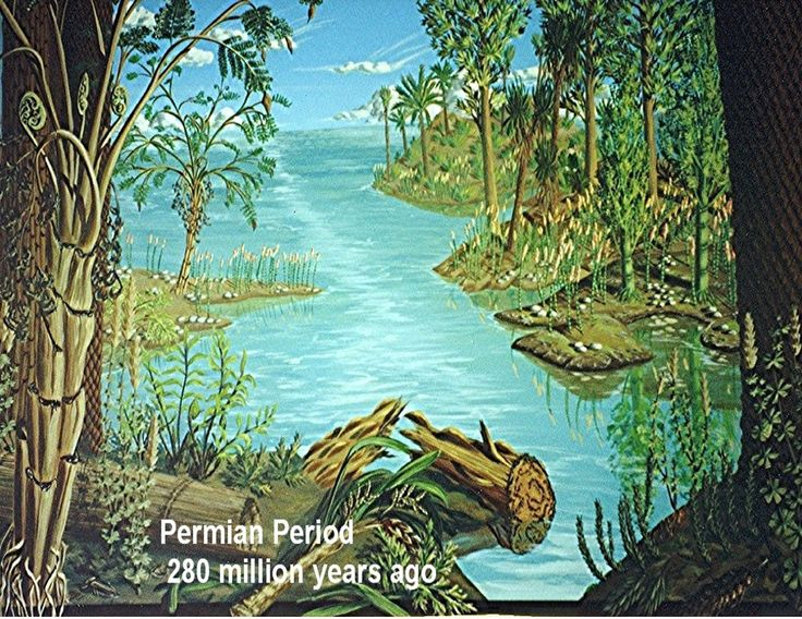 34 best images about permian period on Pinterest   The end ...