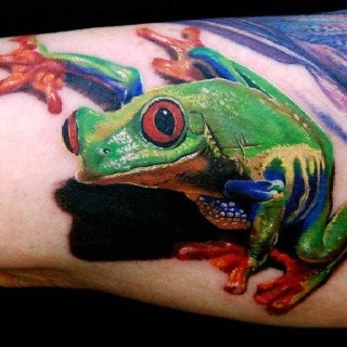 Insanely awesome Red Eyed Tree Frog #Detail