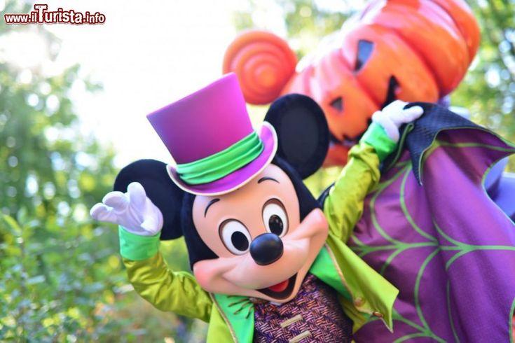 disneyland halloween | Immagine Topolino e zucca di Halloween a Disneyland Paris - © news ...