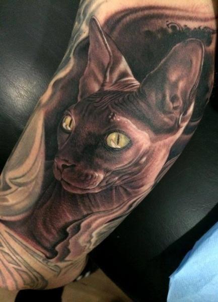 Arm Realistic Cat Tattoo by Fredy Tattoo