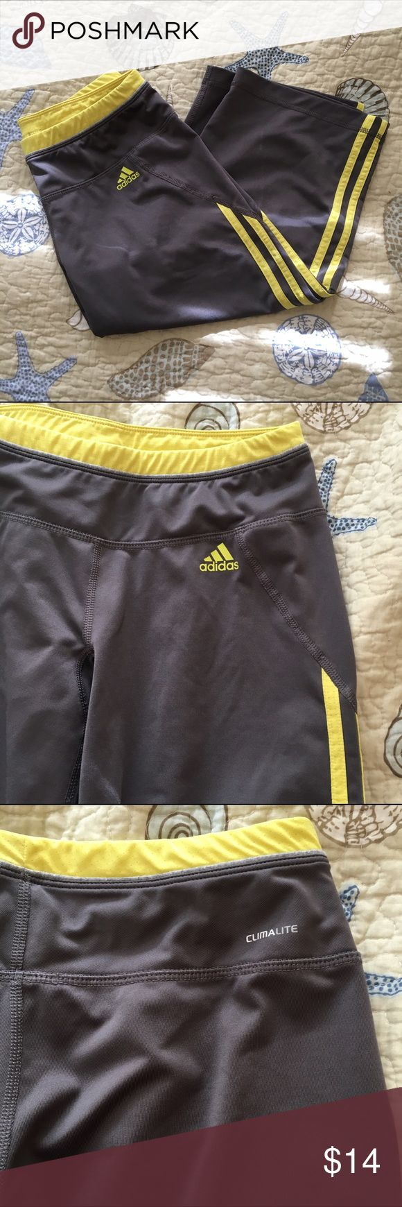 Adidas ClimaLite Workout Capris Adidas ClimaLite workout capris. Very comfortable and breathable. Adidas Pants Track Pants & Joggers