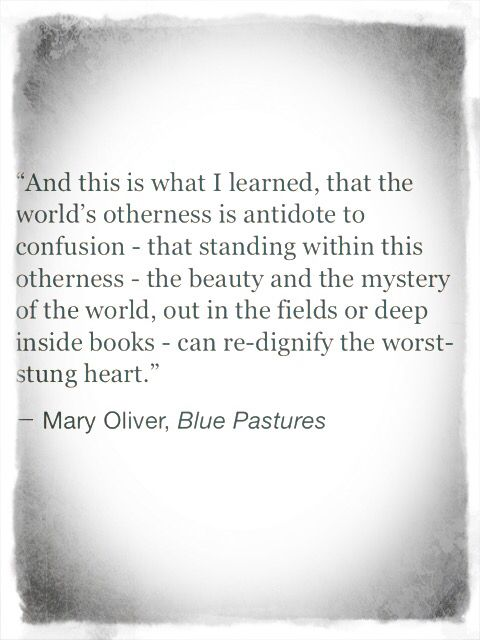 Mary Oliver Blue Pastors Quote | Words of Wisdom | Life + Love | Inspirational & Motivational | Otherness | Living in this World