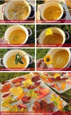 Bunte Herbstblätter haltbar machen …