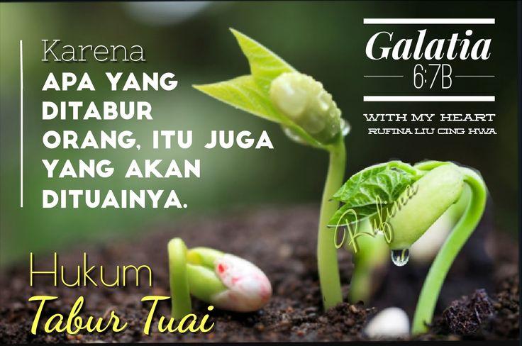 ✿*´¨)*With My Heart  ¸.•*¸.• ✿´¨).• ✿¨) (¸.•´*(¸.•´*(.✿ SELAMAT SIANG ... TYM ~  Galatia 6:8 Sebab barangsiapa menabur dalam dagingnya, ia akan menuai kebinasaan dari dagingnya, tetapi barangsiapa menabur dalam Roh, ia akan menuai hidup yang kekal dari Roh itu.