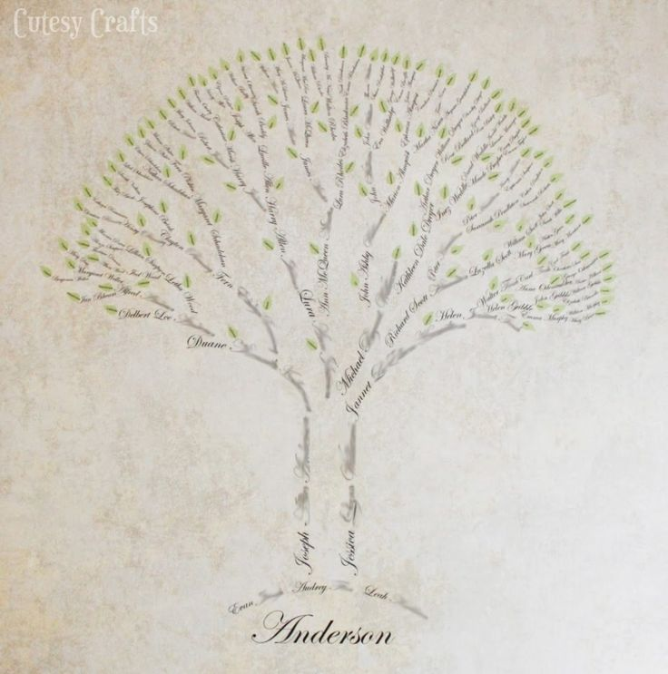Very cool family tree-although, yet again, the creator has an incorrect understanding of how a tree grows. (The roots should be the oldest and the branches the children.)