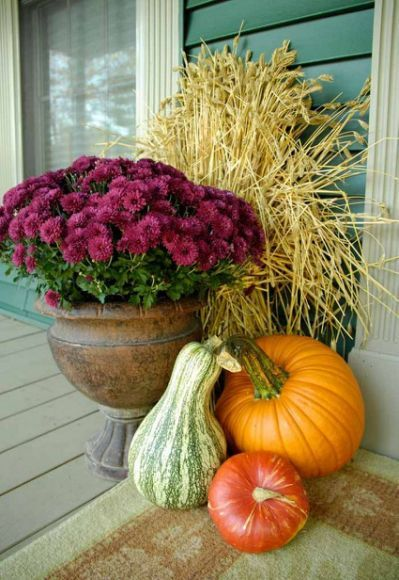 Outdoor Decorating With Pumpkins And Mums Yahoo Search Results