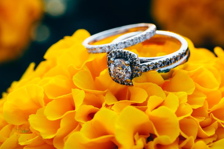 Ring and flower #Wedding #WeddingRing #PEI #PrinceEdwardIsland #Canada #PEIWedding #VSCO #VSCOFilm