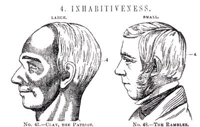 Phrenology Archive - Past Perspectives