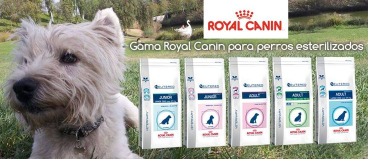 Tienda veterinaria Cruz Cubierta | Venta de pienso de dieta veterinaria para mascotas. Comida y alimentación para perros y gatos.