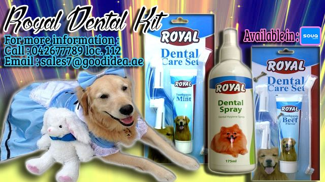 Dental care is key in maintaining a pet's overall health♥  Good Idea Petshop provides best quality of Dental care Set! comes with two (2) flavors Beef and Mint :) Plus a Dental Spray :) AVAIL NOW!  For more information: Call:042677789 loc 112 Email:sales7@goodidea.ae ◘ We are open for those who have petshops,pet store and Good samaritans helping those stray with promotional offer ♥ Also Available in : SOUQ.COM