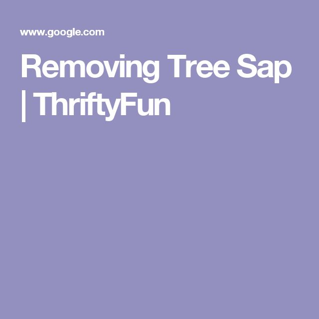 Removing Tree Sap | ThriftyFun