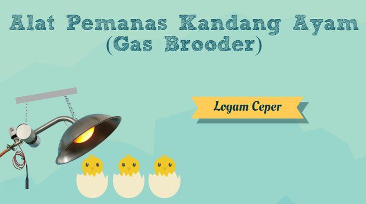 Alat Pemanas Kandang Ayam (Gas Brooder) - Logam Ceper