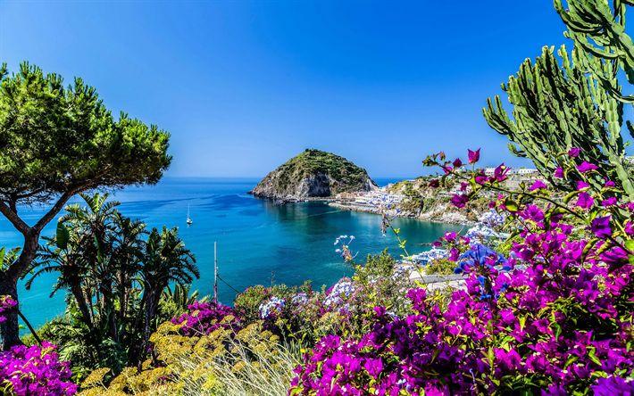 Download wallpapers Italy, coast, sea, bay, bougainvillea, summer, Europe