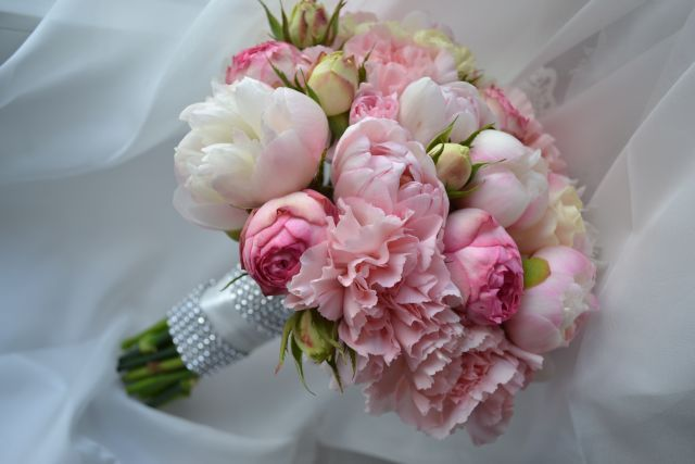 Piwonia i róża angielska