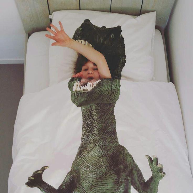 10 Best Ideas About Dinosaur Bedding On Pinterest Boys
