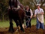 E7 Edwardian Farm - Video Dailymotion
