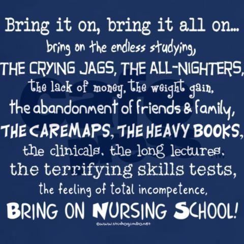 Nursing is it good study subjects in college before the semester