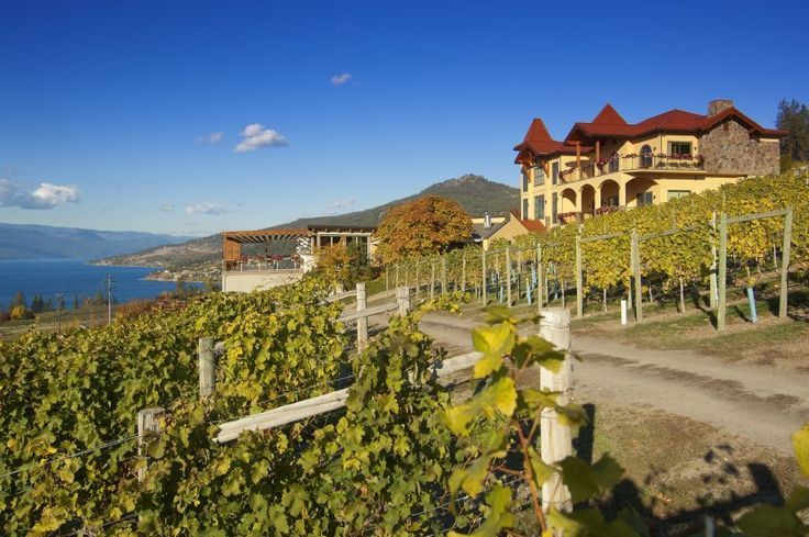 Gray Monk Estate Winey ~ Okanagan Centre British Columbia