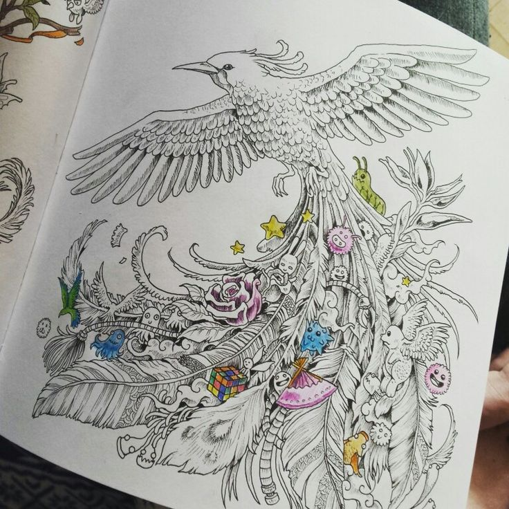 Doodle Art Colouring Doodles Animorphia ColouringColour Book