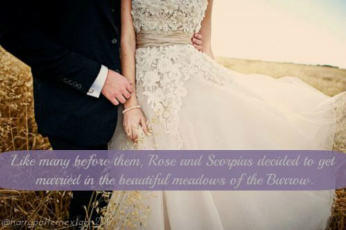 Rose and Scorpius both agreed on holding their wedding at the Burrow. The Burrow…