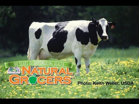 Our Dairy Standard | Natural Grocers