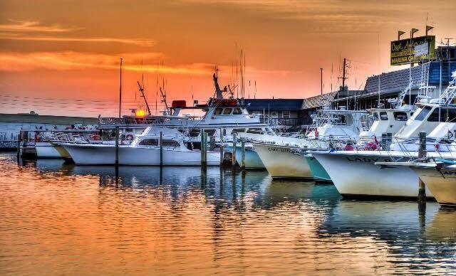 Panama City Beach Florida Deep Sea Fishing Charters Trips | Capt. Anderson's Marina