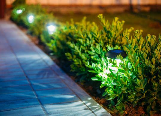Image result for 6 Reasons Why Solar Lights Are More Popular Than Ever