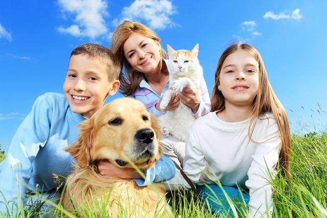 Milyen állat való a családnak? - #Hörcsög, #kutya vagy #macska ?