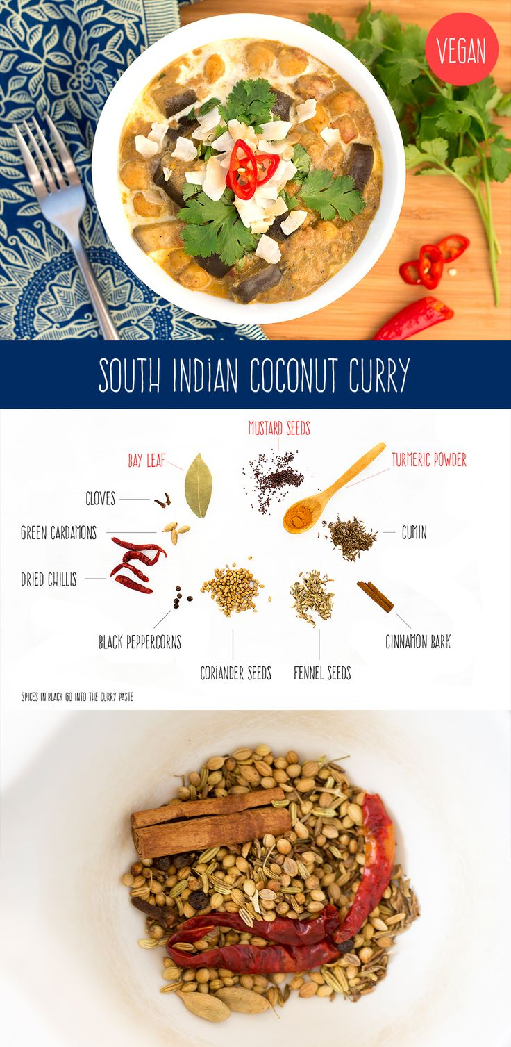Delcious, heart-warming South Indian curry. Chilli kick is contrasted by soothing coconut. #vegan #vegetarian #Indian #curry #dinner #lunch #recipe #recipes