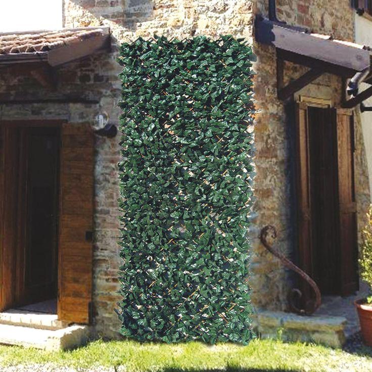 17 migliori idee su giardino sempreverde su pinterest - Sempreverde da giardino ...