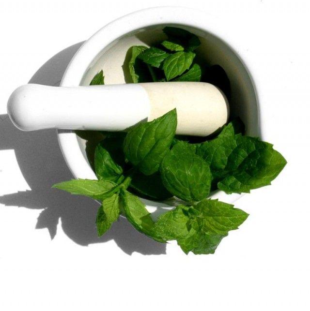 la menta 10 remedios caseros para combatir los cálculos biliares.