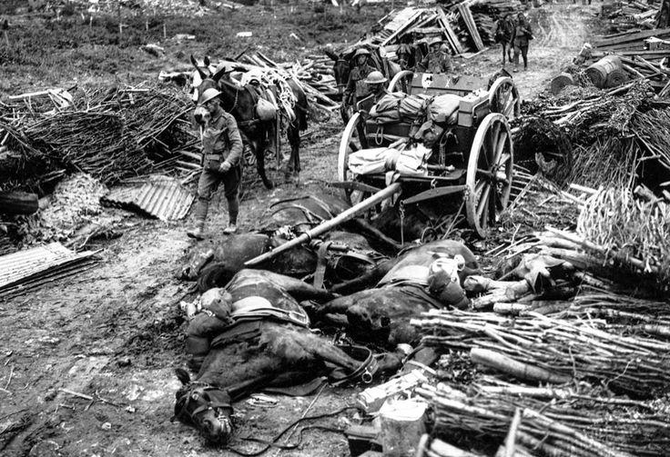 In juli 1917 willen de Britten een einde maken aan de Eerste Wereldoorlog. Veldmaarschalk Douglas Haig belooft dat hij de Duitsers op de vlucht kan jagen, maar de Slag om Passendale loopt uit op een bloedbad van ongekende proporties. Een hele generatie jonge mannen sneuvelt omdat een Britse veldmaarschalk niet op wil geven.