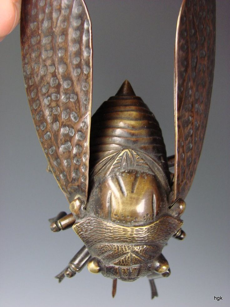Meiji Japanese Reticulated Bronze Cicada Insect BUG Artist Signed from hideandgokeep on Ruby Lane